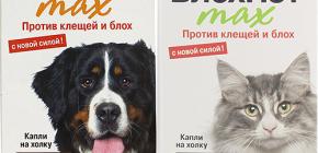 Significa Blohnet per cani e gatti: recensioni e istruzioni per l'uso