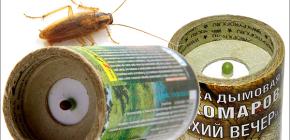 Bombe antifumo insetticide per uccidere gli scarafaggi nell'appartamento