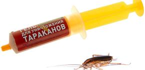 Rimedi per gli scarafaggi nella siringa (gel): una revisione dei farmaci e le sfumature del loro uso