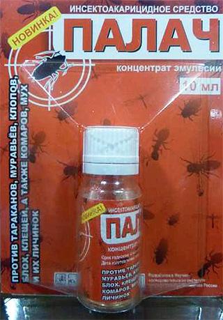 Rimedio per i bug domestici Executioner