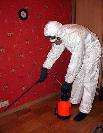 Disinfezione dell'appartamento dagli scarafaggi