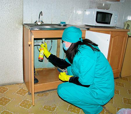 Gli spray devono essere spruzzati in luoghi in cui gli insetti possono accumularsi.
