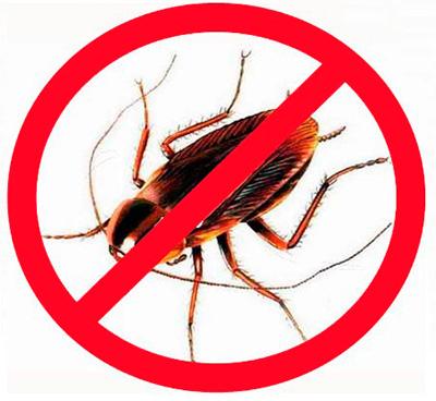 L'uso di insetticidi moderni