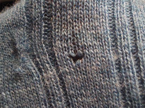 Questo buco nel maglione ha lasciato le larve della falena