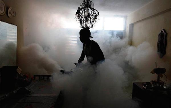 Durante la lavorazione dei locali con nebbia calda, viene creato anche un aerosol insetticida molto fine.