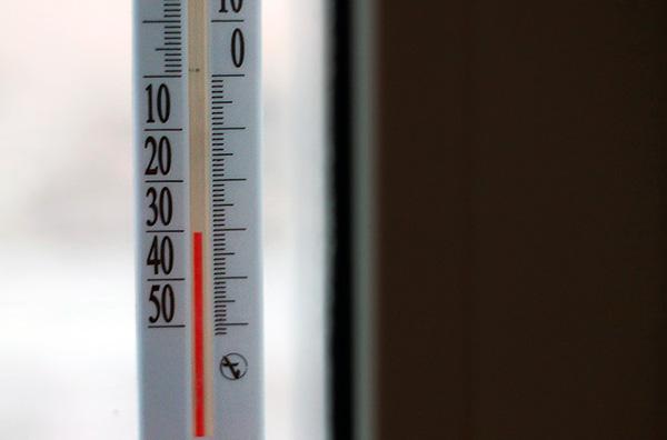 Invece di affamare i veleni degli insetti, possono essere distrutti dal congelamento (mobili, vestiti o persino l'intero appartamento).