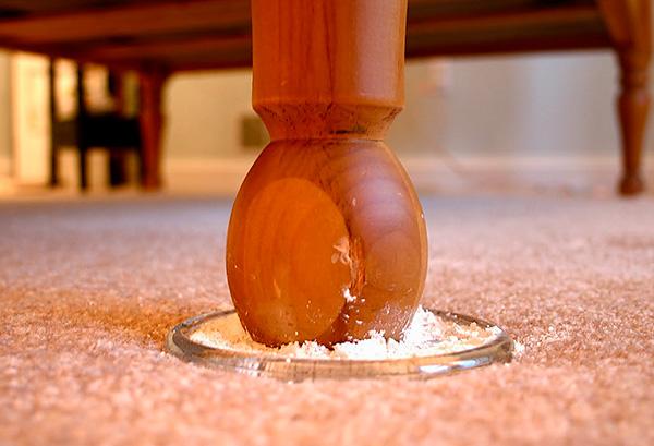Un esempio dell'uso di polvere insetticida per la prevenzione delle cimici da riproduzione nell'appartamento.